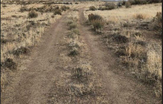 40 Acres of Ranch Land in Pershing County, NV