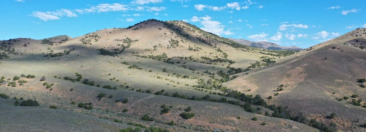 2 10 Acre Properties that are connected with BLM land on both sides