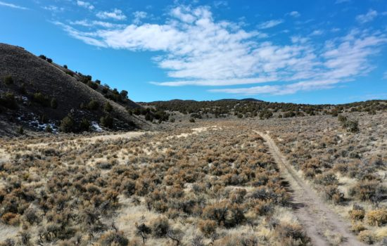 40 acres of privacy, wildlife, and scenery!