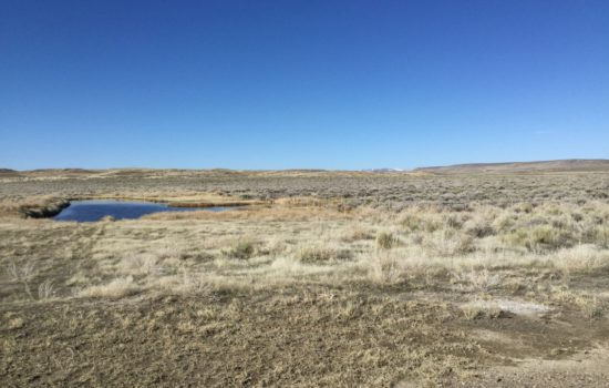 Live the Dream on this 30 Acre Property in Elko County, Nevada!